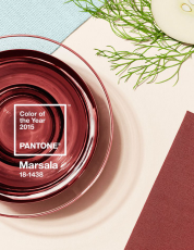 pantone_color_of_the_year_marsala