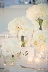 Summer Wedding Colors: White andIvory